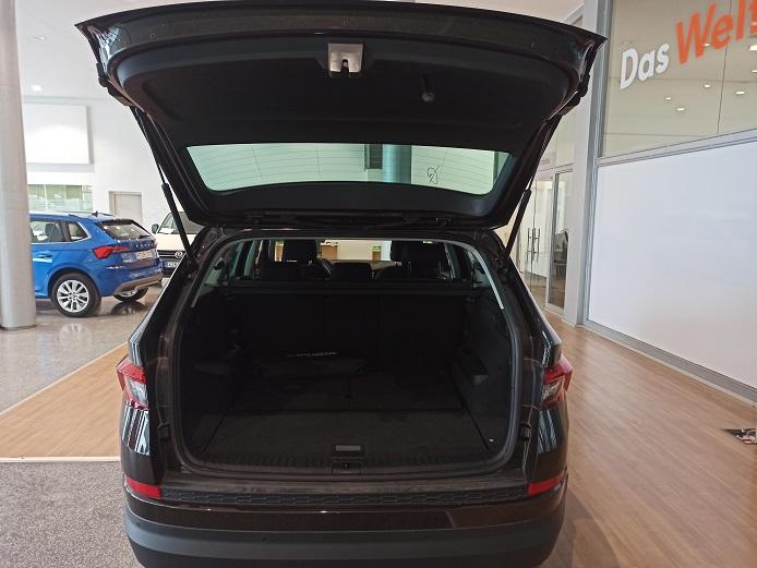 Das WeltAuto SKODA Kodiaq 2.0TDI AB tech Ambition